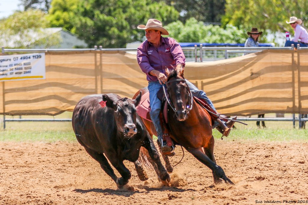 Soda Bradman Dalby Sale Open Winner 2015
