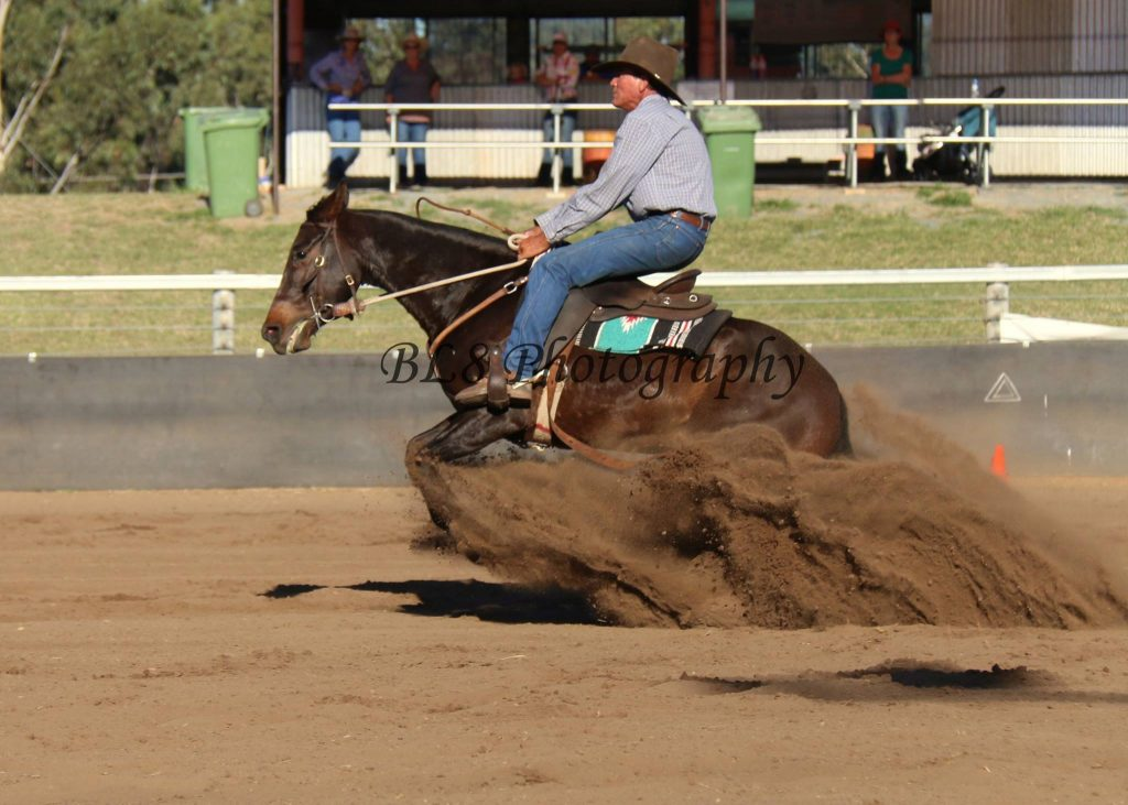 Ron Wall and Youngstar Marnies Glamour won the Open Cloncurry Stockmans Challenge, Novice and cut out at Tennant Creek, Open Challenge at Tennant Creek