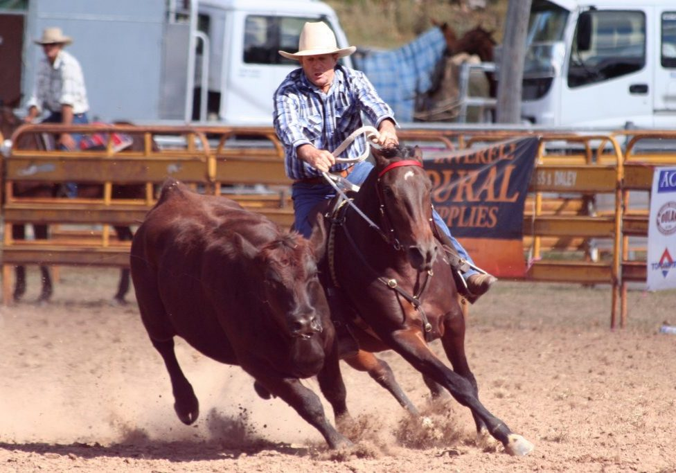 Bill Waldron and Gatton UQ Destiny won the novice at Meandarra 2016 after first start back from having a foal